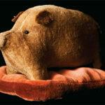Pig On Blanket