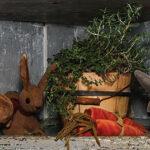 Rabbits & Carrots