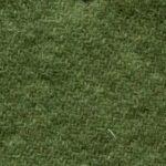 spring_grass